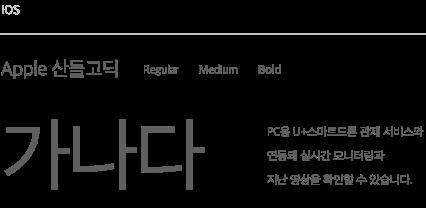 LG U+ 스마트드론 font 02